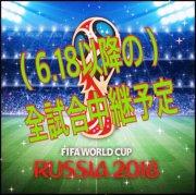 ロシアW杯パブリックビューイング