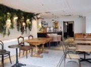11月9日(土)赤坂 オシャレなカフェで学生or25歳以下限定Gaitomo国際交流会